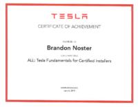Brandon N Tesla 1