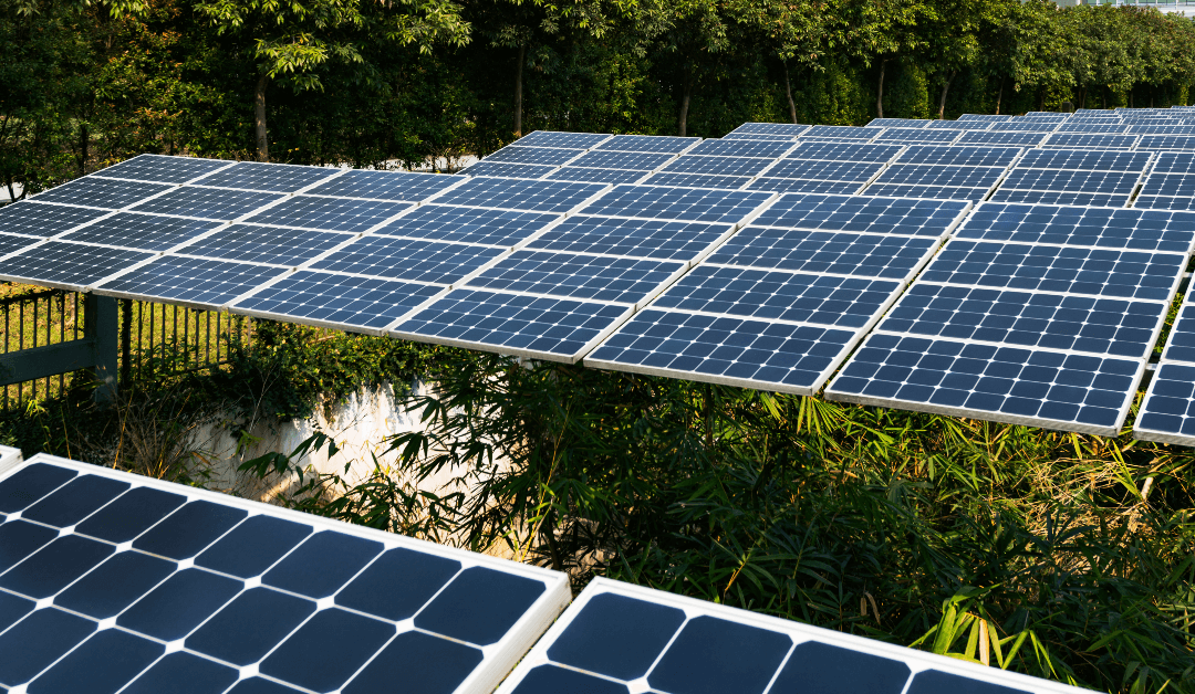 Why Companies Are Choosing Commercial Solar For Their Business